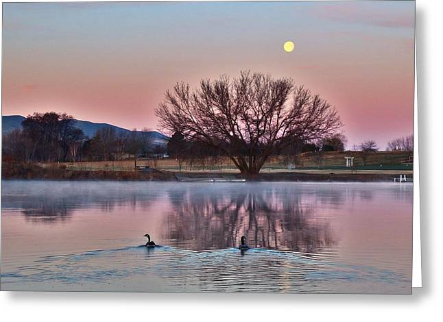 Greeting Card featuring the photograph Pink Morning by Lynn Hopwood