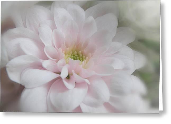 Pink Mum Greeting Card