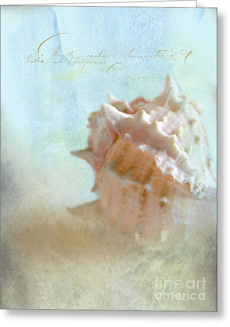 Pink Murex Seashell Greeting Card by Betty LaRue