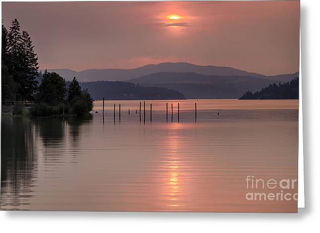 Pink On The Bay Greeting Card by Idaho Scenic Images Linda Lantzy