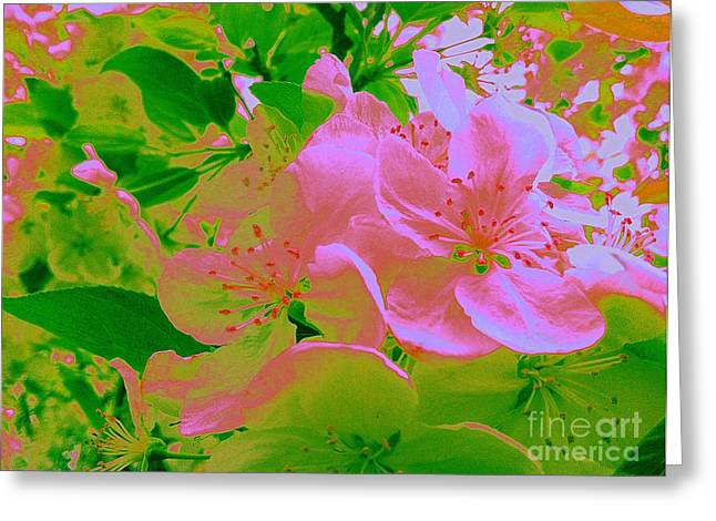 Pink Passion Crabapple Greeting Card by Shelia Kempf