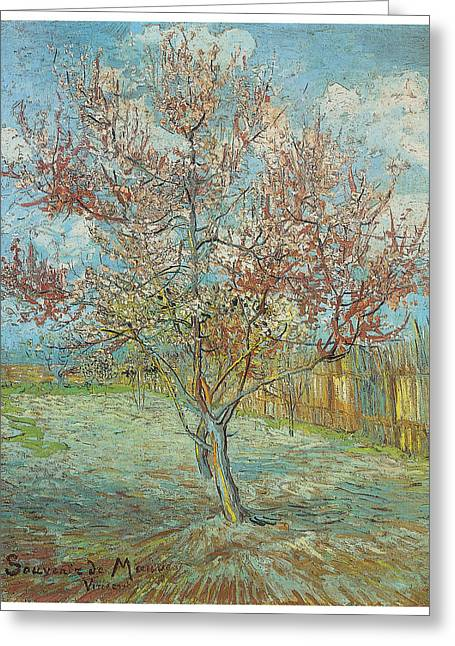 Pink Peach Tree In Blossom Greeting Card by Vincent Van Gogh