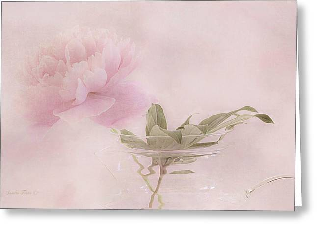 Pink Peony Blossom In Clear Glass Tea Pot Greeting Card