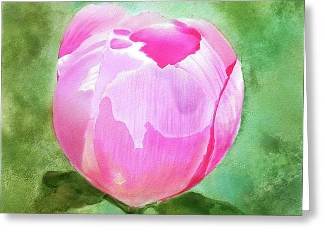 Pink Peony Bud Greeting Card by Joan A Hamilton