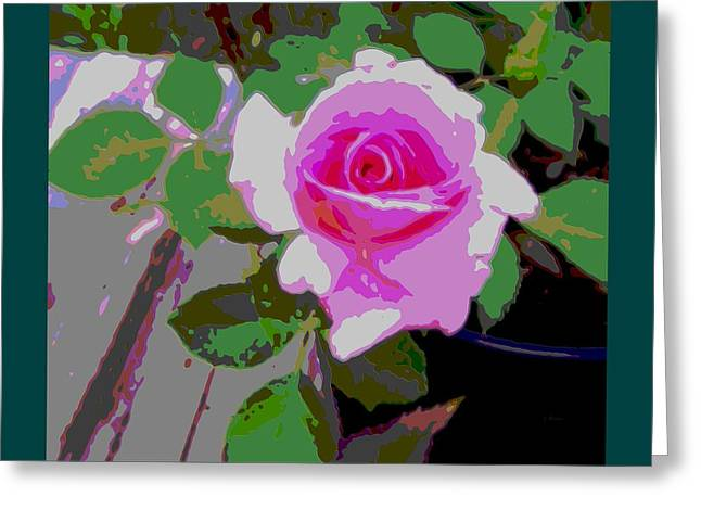 Pink Potted Rose Teal Border Greeting Card