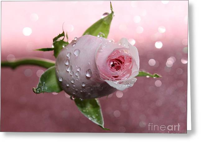 Pink Romance Greeting Card by Krissy Katsimbras