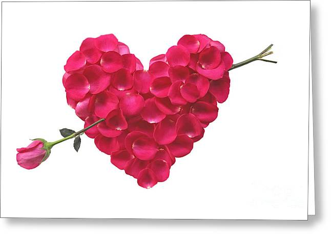 Pink Rose Heart Valentine Greeting Card by Boon Mee