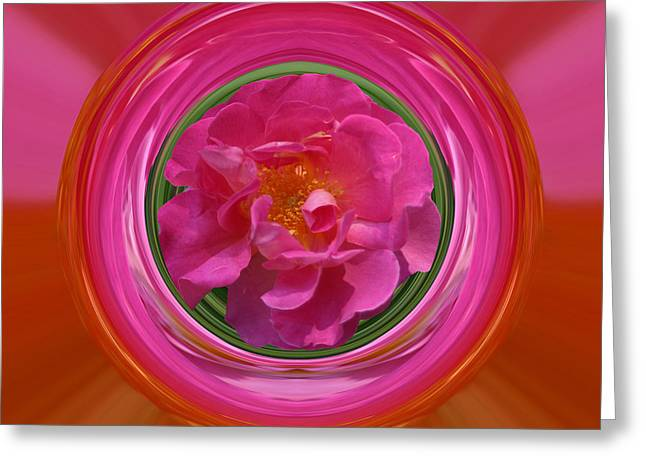 Pink Rose Series 113 Greeting Card