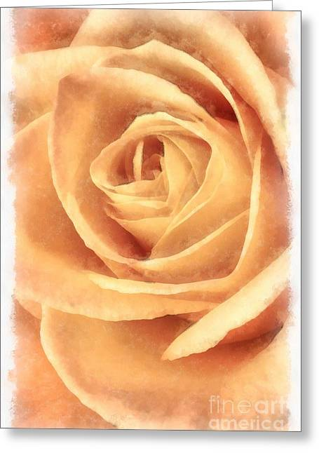 Pink Rose Watercolor Greeting Card by Edward Fielding