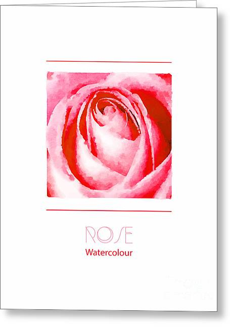 Pink Rose Watercolour Greeting Card