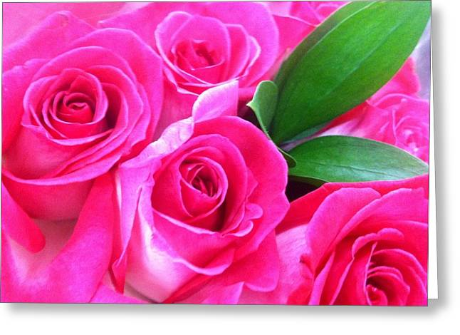 Greeting Card featuring the photograph Pink Roses by Alohi Fujimoto