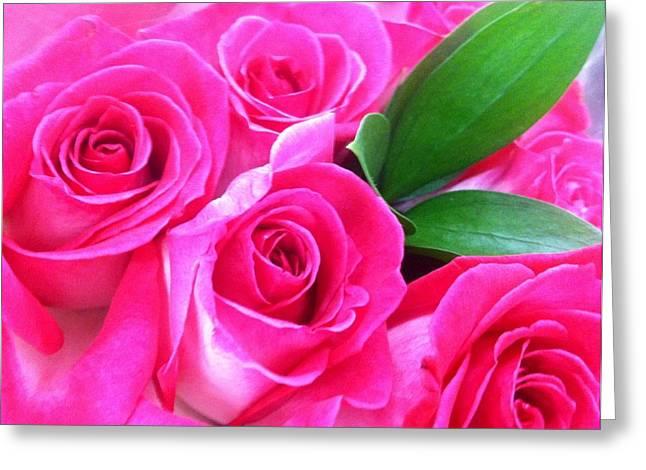 Pink Roses Greeting Card by Alohi Fujimoto