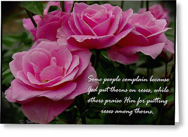 Roses And Thorns Greeting Card