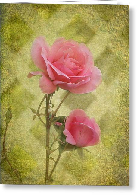 Pink Roses Greeting Card by Angie Vogel