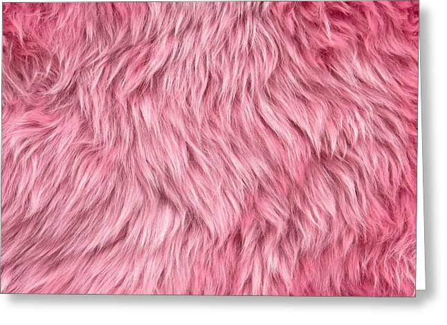 Pink Sheepskin Greeting Card by Tom Gowanlock
