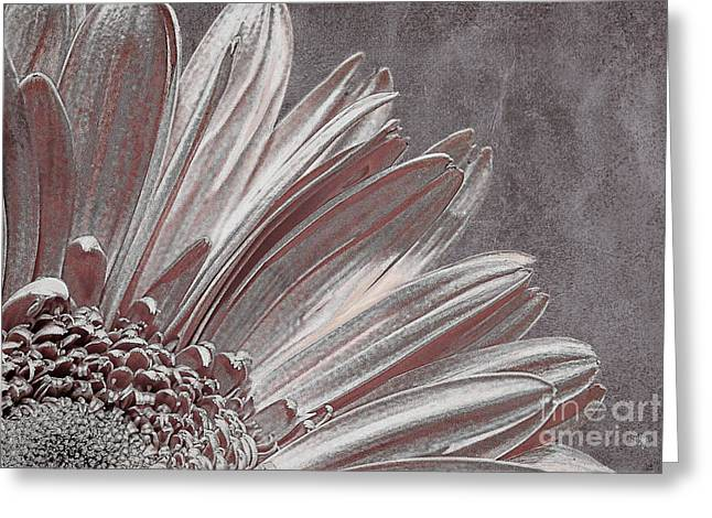Pink Silver Greeting Card by Lois Bryan