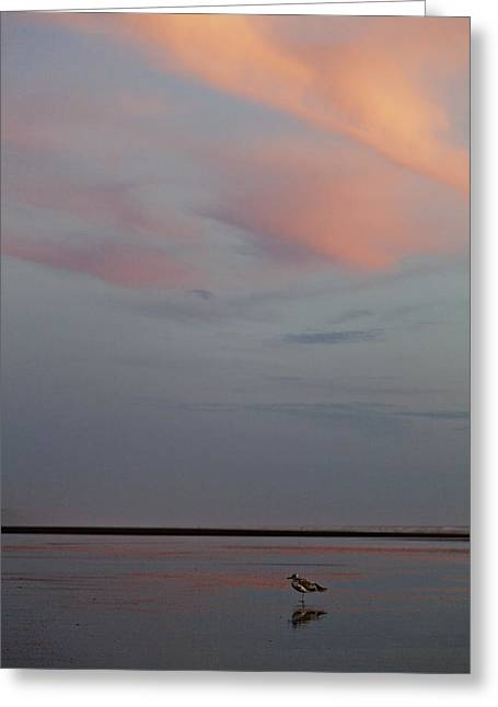 Greeting Card featuring the photograph Pink Sky And Sand by Kjirsten Collier