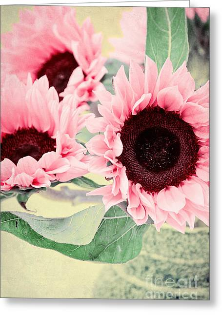 Pink Sunflowers Greeting Card