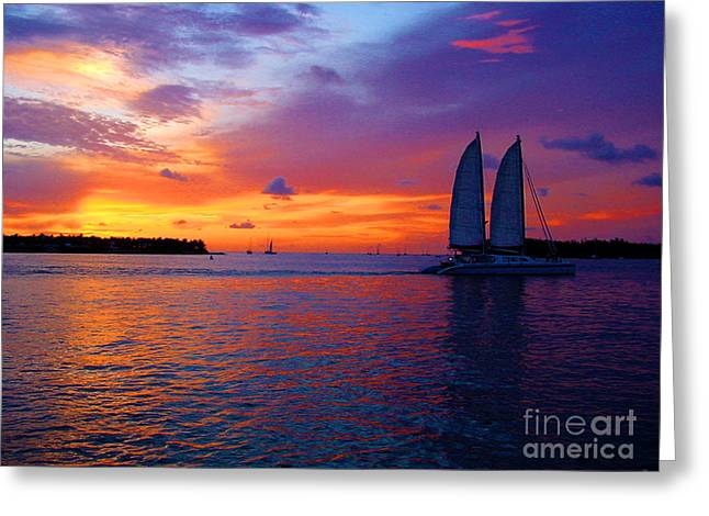 Pink Sunset In Key West Florida Greeting Card