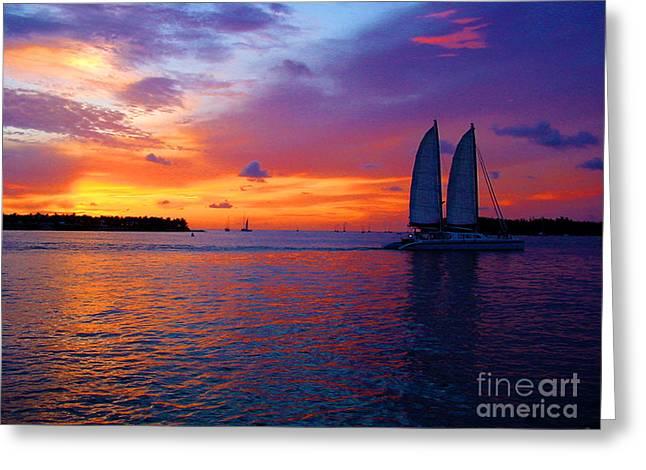 Pink Sunset In Key West Florida Greeting Card by Susanne Van Hulst