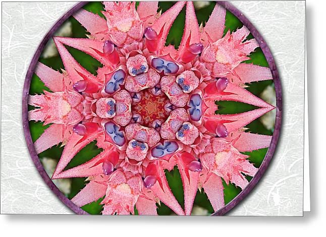 Pink Tropical Bromeliad Mandala On Green Tinted Rice Paper Greeting Card