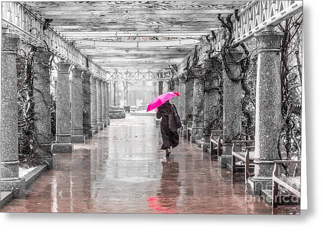 Pink Umbrella In A Storm Greeting Card by Susan Cole Kelly Impressions
