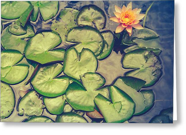 Pink Water Lily And Pads Greeting Card by Mr Doomits