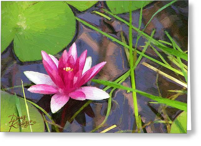 Greeting Card featuring the painting Pink Water Lily by Doug Kreuger