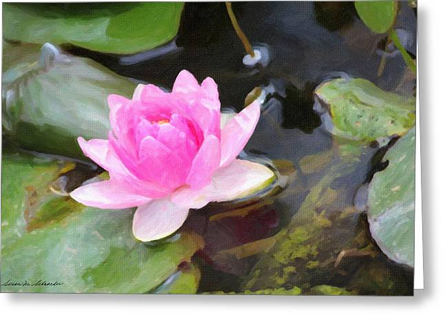 Pink Water Lily Greeting Card by Susan Schroeder