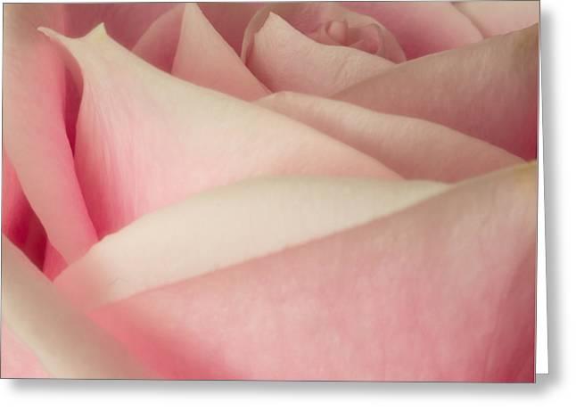 Pink Waves Greeting Card by Ernie Echols