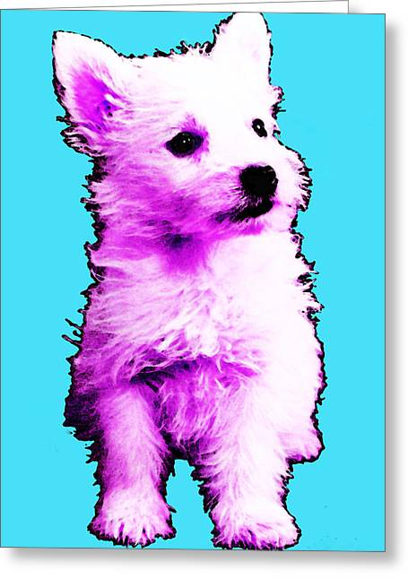 Pink Westie - West Highland Terrier Art By Sharon Cummings Greeting Card by Sharon Cummings