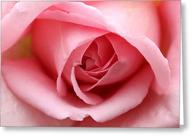 Pinkalicious Greeting Card
