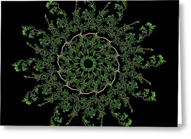 Pinwheel I Greeting Card by Debra and Dave Vanderlaan