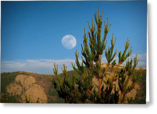 Pinyon Moon Greeting Card