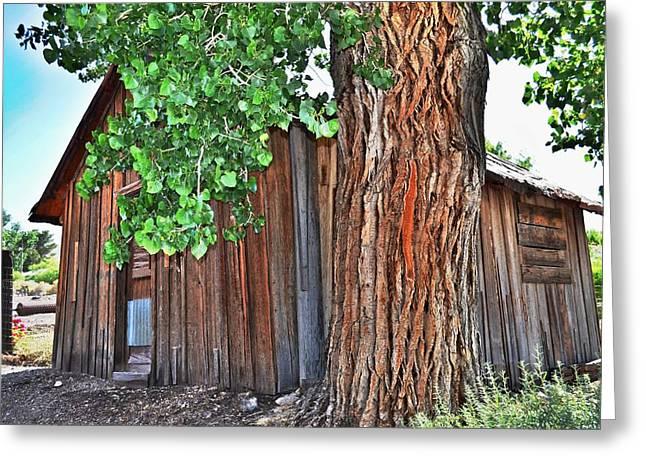 Pioneer Cabin Greeting Card