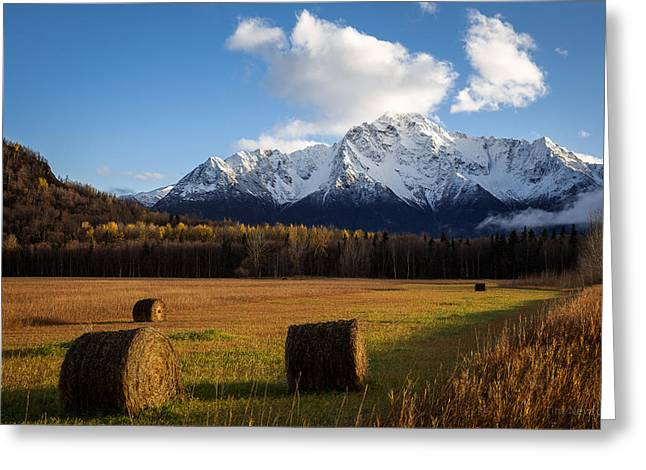 Pioneer Hay Fields Greeting Card