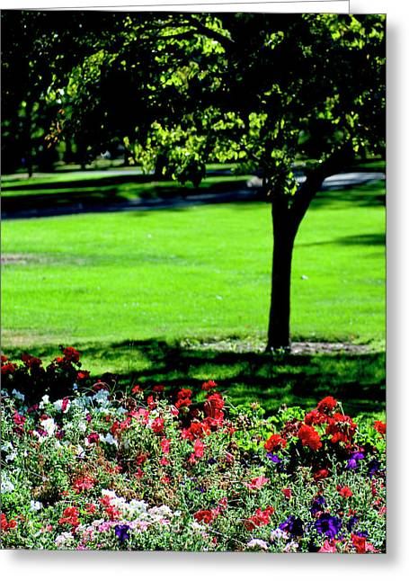 Pioneer Park, Walla Walla, Washington Greeting Card by Nik Wheeler