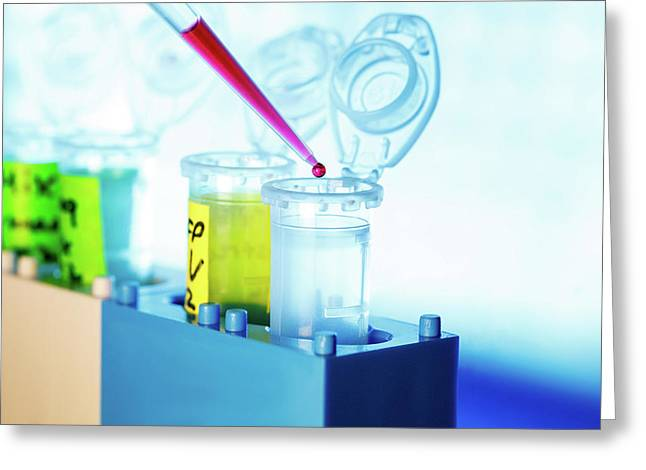 Pipette And Eppendorf Tubes Greeting Card by Wladimir Bulgar