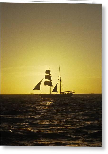 Pirates At Sea - Caribbean Greeting Card by Douglas Barnett