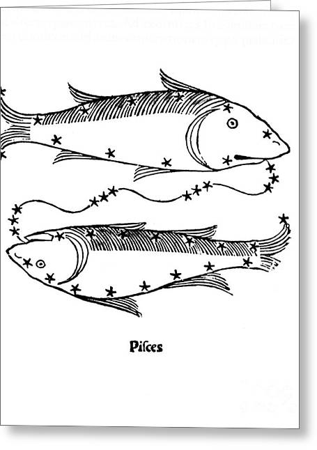 Pisces Constellation Zodiac Sign 1482 Greeting Card by Science Source