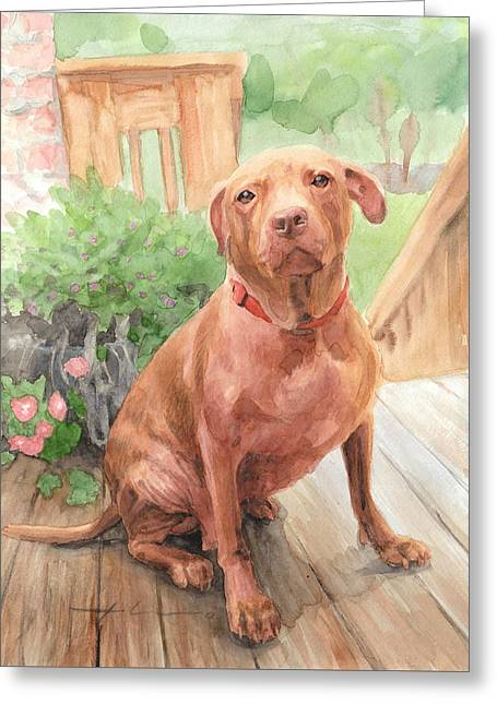 Pitbull Watercolor Portrait Greeting Card by Mike Theuer