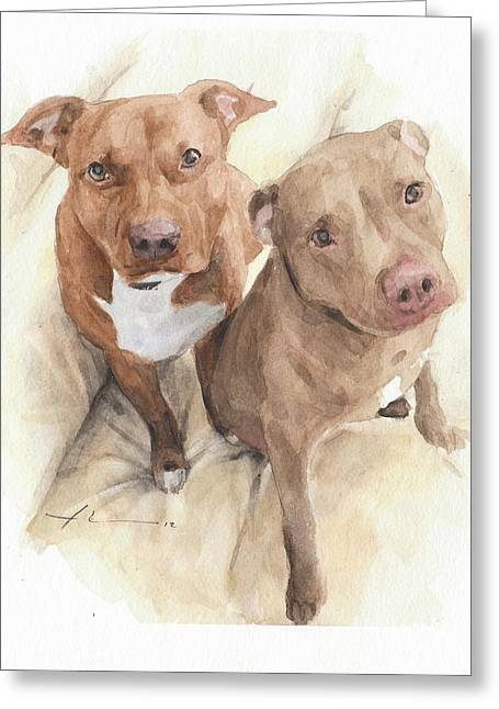 Pitbulls Watercolor Portrait Greeting Card by Mike Theuer