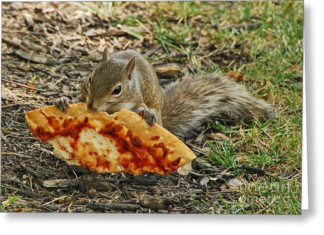 Pizza For  Lunch Greeting Card by Mary Carol Story