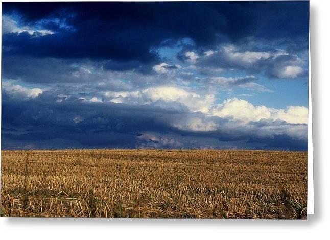 Greeting Card featuring the photograph Plain Sky by Rodney Lee Williams