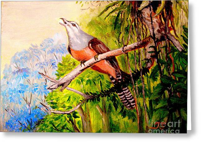 Plaintive Cuckoo Greeting Card