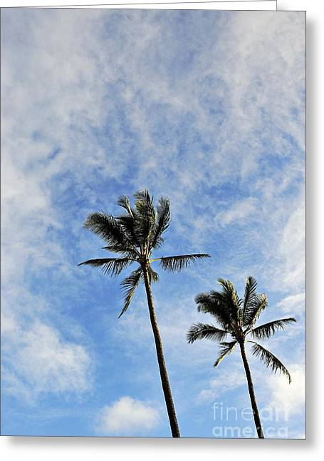 Plam Trees At Sunrise Greeting Card