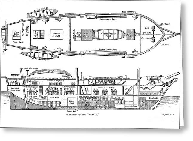 Plan Of The Hms Beagle, 1832 Greeting Card