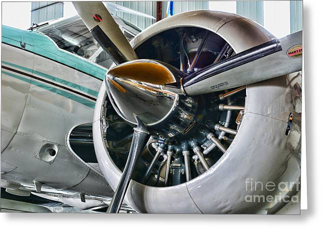 Plane First Class Greeting Card by Paul Ward