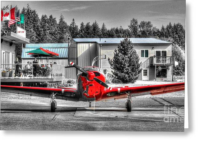 Flying To Lunch In Pacific Northwest Washington  Greeting Card by Tap On Photo