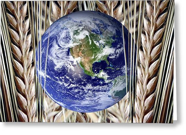 Planet Earth And Wheat Greeting Card by Victor De Schwanberg